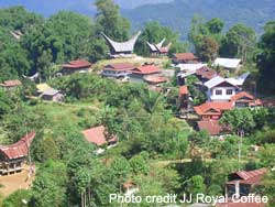 Mountainous Toraja area