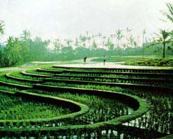 Nirwana Bali Resort, Bali