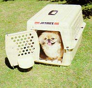 Only transport your pets in airline-approved cages